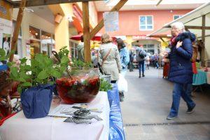 Frühjahrsmarkt_MeinLiLa©J.Goedicke