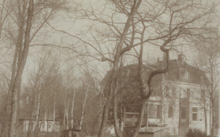 Siemens_Corrensvilla Bild Großbaumverpflanzung